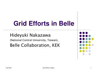 Grid Efforts in Belle
