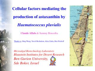Cellular factors mediating the production of astaxanthin by  Haematococcus pluvialis