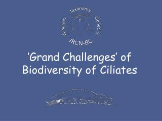 'Grand Challenges' of Biodiversity of Ciliates