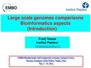 Large scale genomes comparisons Bioinformatics aspects (Introduction)