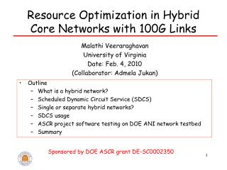Resource Optimization in Hybrid Core Networks with 100G Links