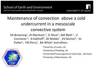 Maintenance of convection  above a cold undercurrent in a mesoscale convective system