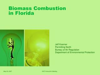 Biomass Combustion in Florida
