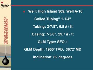 "S  Well: High Island 309, Well A-16 Coiled Tubing"" 1-1/4"" Tubing: 2-7/8"", 6.5 # / ft"