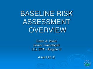 BASELINE RISK ASSESSMENT  OVERVIEW