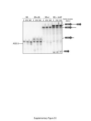 Supplementary Figure S1
