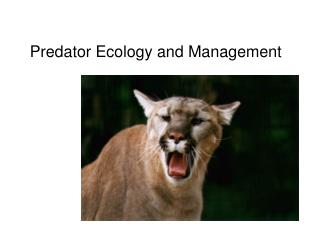 Predator Ecology and Management