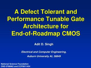 A Defect Tolerant and Performance Tunable Gate Architecture for  End-of-Roadmap CMOS