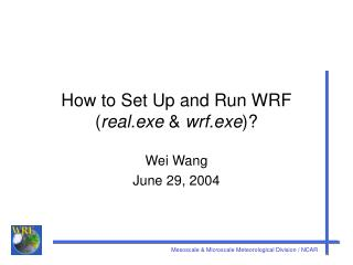 How to Set Up and Run WRF ( real.exe  &  wrf.exe )?