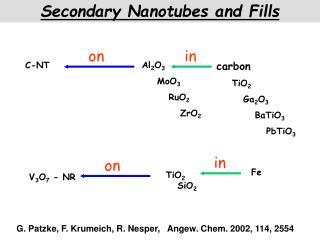 Secondary Nanotubes and Fills