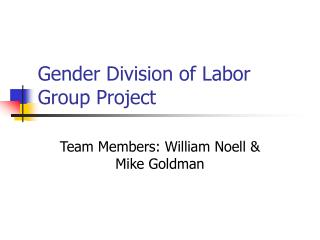 Gender Division of Labor Group Project