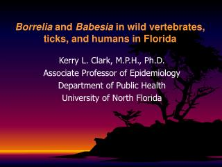 Borrelia  and  Babesia  in wild vertebrates, ticks, and humans  in Florida