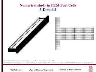 Numerical study in PEM Fuel Cells 3-D model