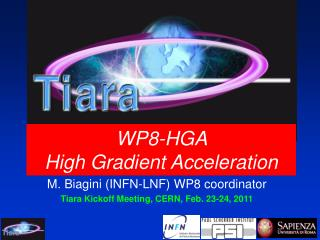 WP8-HGA  High Gradient Acceleration