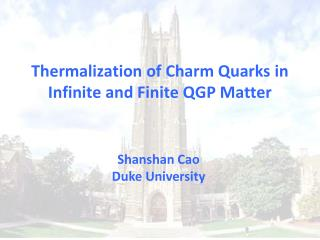 Thermalization of Charm Quarks in Infinite and Finite QGP Matter