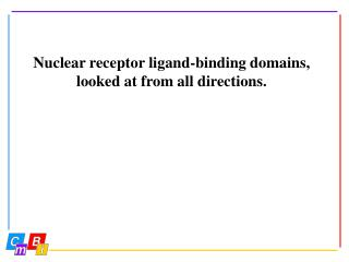 Nuclear receptor ligand-binding domains, looked at from all directions.