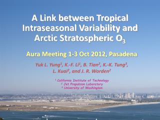 A Link between Tropical Intraseasonal Variability and Arctic Stratospheric O 3