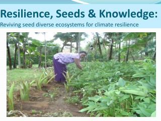 Resilience, Seeds & Knowledge: Reviving seed diverse ecosystems for climate resilience