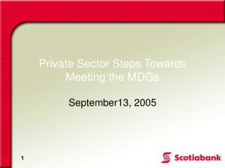 Private Sector Steps Towards Meeting the MDGs