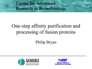 One-step affinity purification and processing of fusion proteins