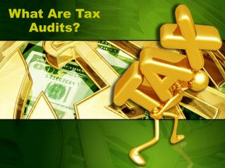 What Are Tax Audits?