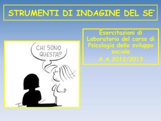 STRUMENTI DI INDAGINE DEL SE'