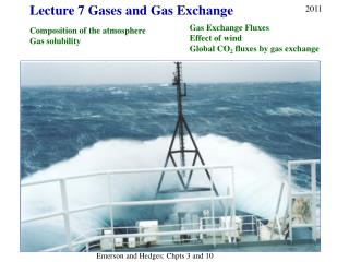 Lecture 7 Gases and Gas Exchange