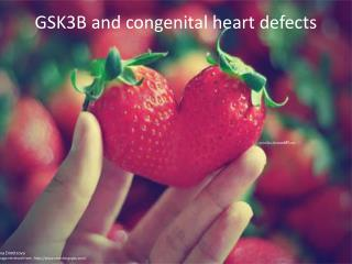 GSK3B and congenital heart defects