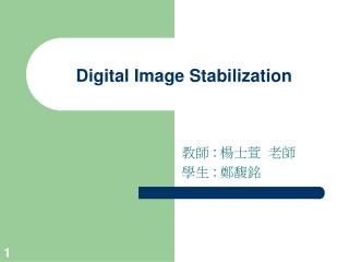 Digital Image Stabilization