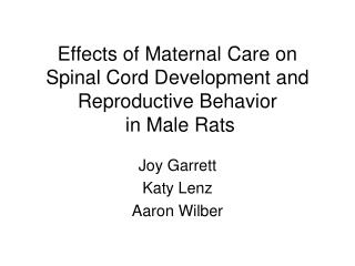 Effects of Maternal Care on Spinal Cord Development and Reproductive Behavior  in Male Rats