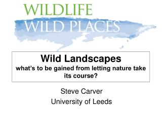Wild Landscapes  what's to be gained from letting nature take its course?