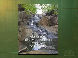 Alabama  Best Management  Practices for Forestry