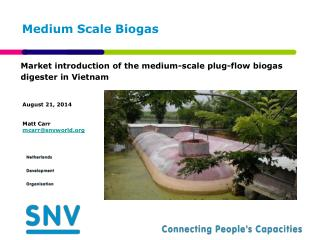Medium Scale Biogas