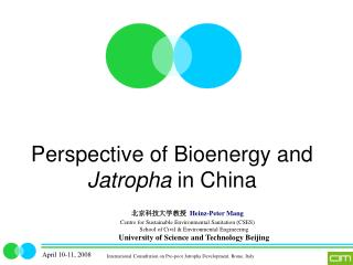 Perspective of Bioenergy and  Jatropha  in China