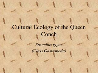 Cultural Ecology of the Queen Conch