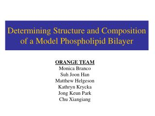 Determining Structure and Composition of a Model Phospholipid Bilayer