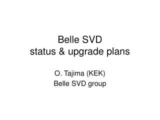 Belle SVD  status & upgrade plans