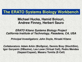 The ERATO Systems Biology Workbench