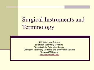 Surgical Instruments and Terminology