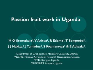 Passion fruit work in Uganda
