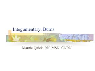 Integumentary: Burns