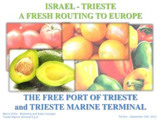 THE FREE PORT OF TRIESTE and TRIESTE MARINE TERMINAL