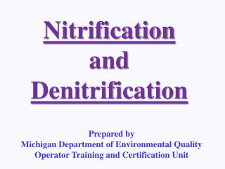 Nitrification and Denitrification