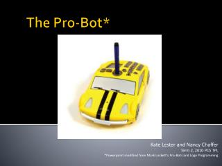 The Pro- Bot *