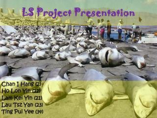 LS Project Presentation