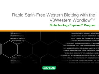 Rapid Stain-Free Western Blotting with the V3Western Workflow™