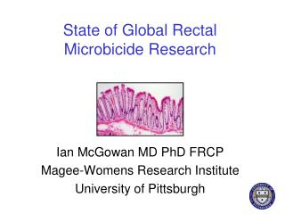 State of Global Rectal Microbicide Research
