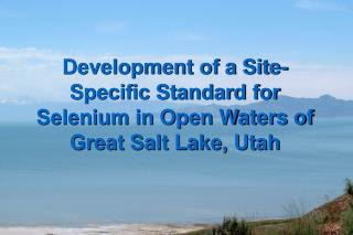 Development of a Site-Specific Standard for Selenium in Open Waters of Great Salt Lake, Utah