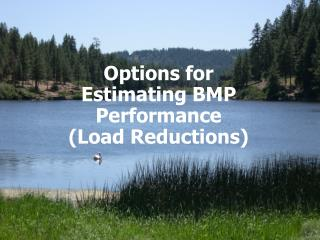 Options for Estimating BMP Performance  (Load Reductions)