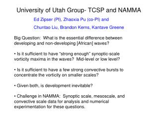 University of Utah Group- TCSP and NAMMA